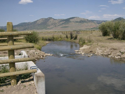 How An Unlikely Partnership Is Working To Bring Back A Native Idaho Trout