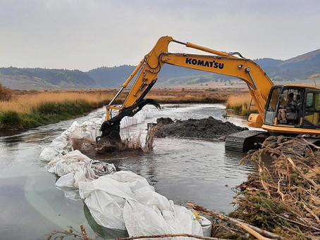 Rescuing a river system: Several moving parts involved in rehabilitating the upper Blackfoot River