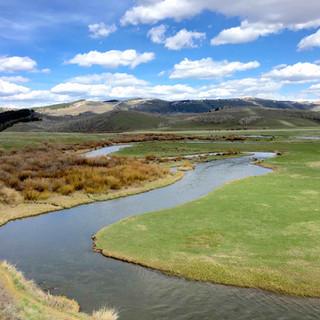 Blackfoot River temp monitoring.jpg
