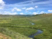 BRWMA hillside (1).jpg
