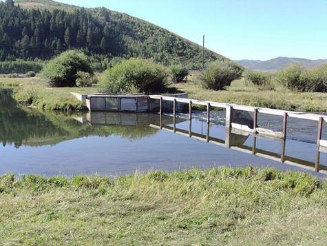 New Farm Bill Program Benefiting Idaho Farms and Ranches