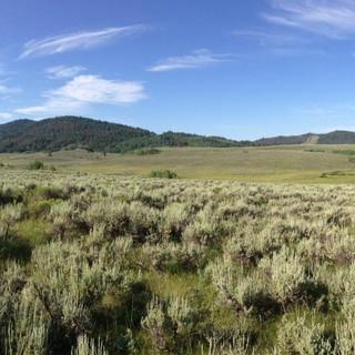 Blackfoot landscape scene.jpg