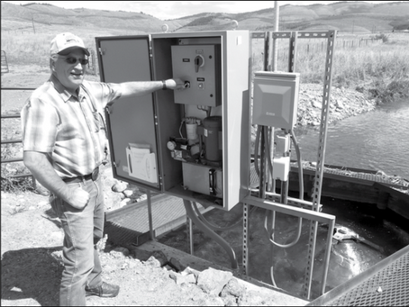 Trout, Habitat, and Cattle All Benefit from Group Effort on Blackfoot River