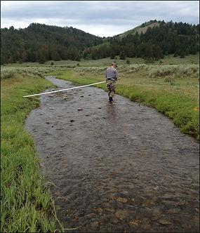 Sheep Creek Before.jpg