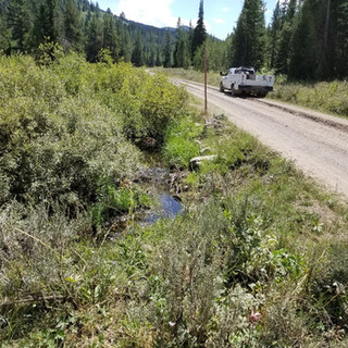 Diamond Creek Road Relocation 3.jpg
