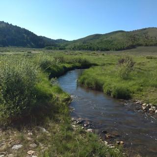Sheep Creek -- IDFG photo.jpg