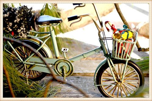 Holiday Aqua Bike