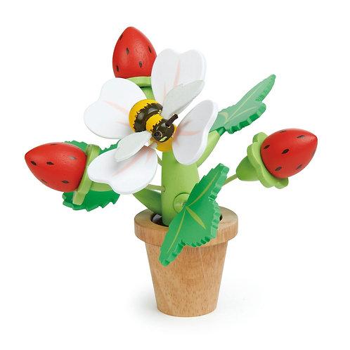 Tender Leaf  Toys  Strawberry Flower Pot