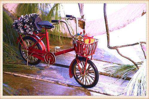 Holiday Red Bike