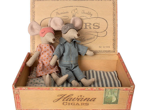 Dad & Mom Mouse in Cigar Box