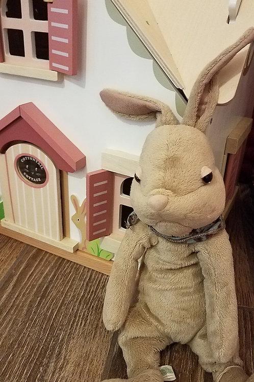 Mr. Classic Rabbit