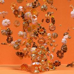rosebush_orange