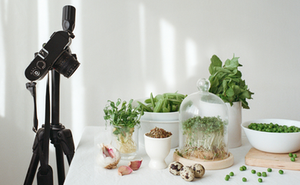 Product photography of plants.