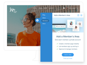 Adding a Member's Area to a Wix online store.