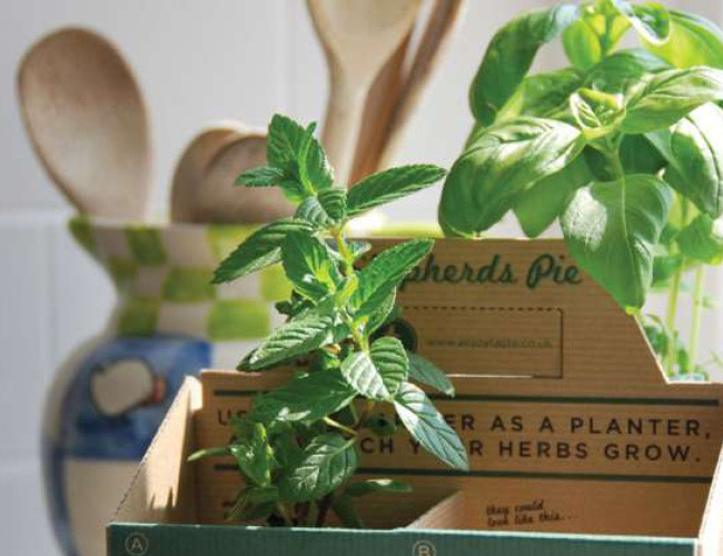 Shepard's Pie planter product packaging example.