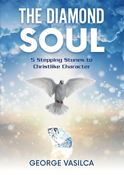 Cover of first book DS1