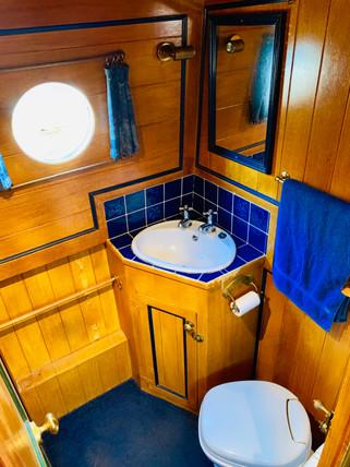 Narrowboat Ballinger - Bathroom