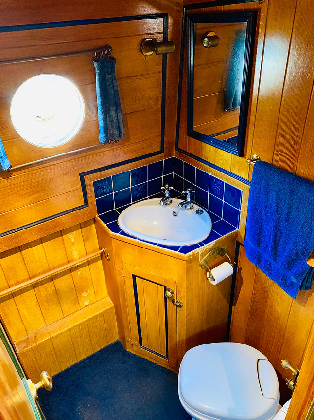 Narrowboat Ballinger - Bathroom