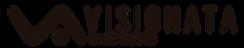 Visionata_Logo2020_horizontal.png