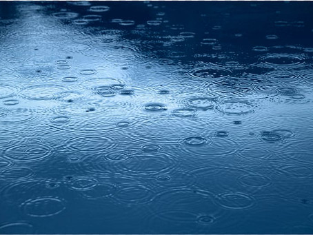 Light to Moderate Showers in Forecast as Weak Trough Affects the Lesser Antilles