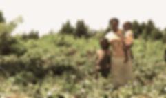 Ocia Families.jpg