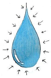 Water has memory, water memory