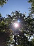 zon en schaduw