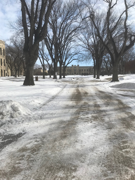 Saskatoon, UofS March 16, 2020  I took this photo because it was 1:25, right in the middle of what normally would have been class change. The paths would normally be teeming with students going to their next class. It was the day they cancelled classes and the day before I was sent home from the research station, to work from home instead of on campus.