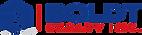 BOLDT_Logo1.png