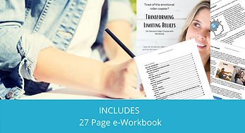 INCLUDES A 27 Page e-Workbook.png