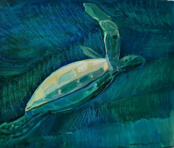 Ronquino oil-Turtle.jpg