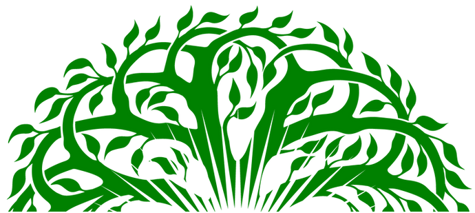 Branches PNG.png