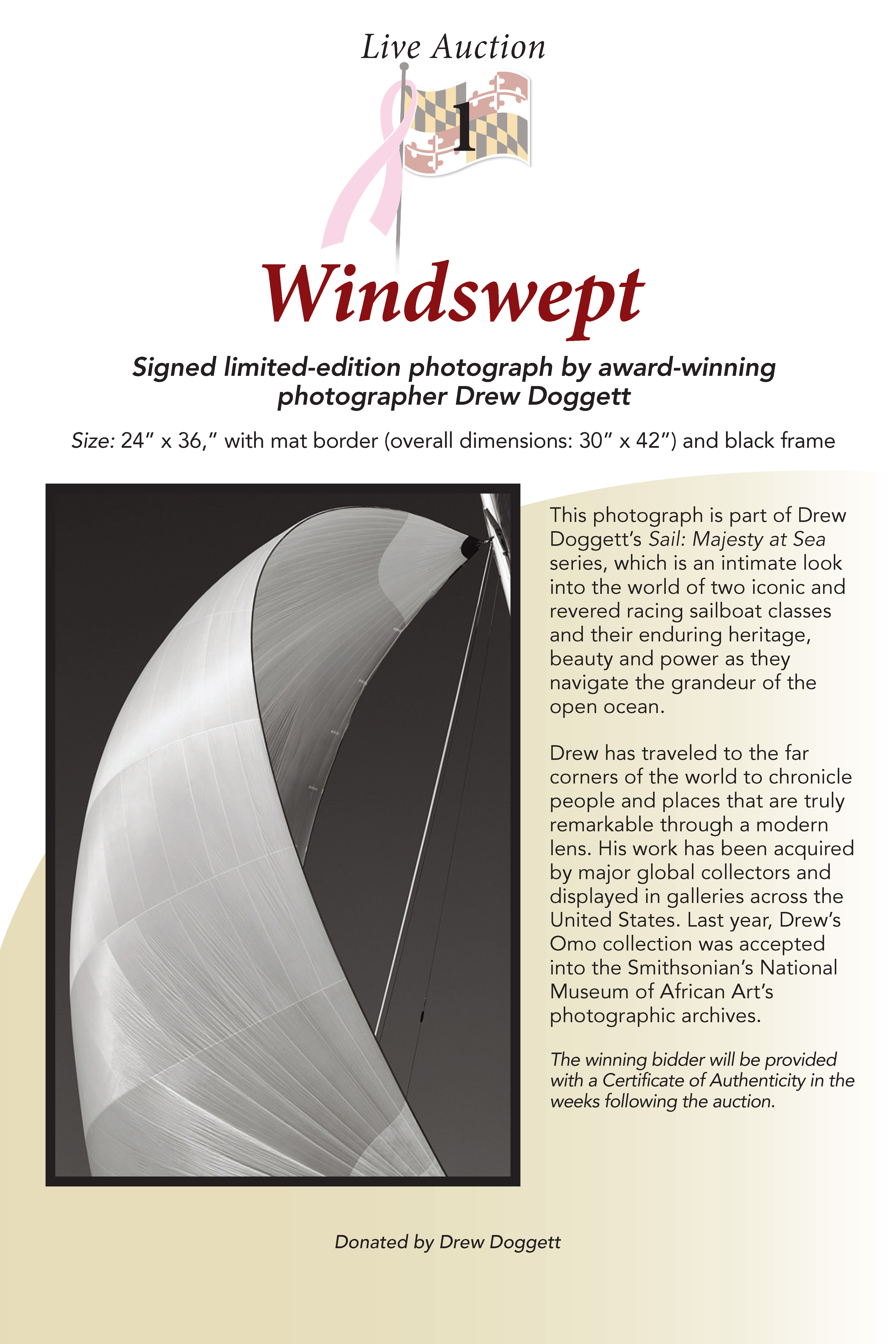 Windswept Photograph