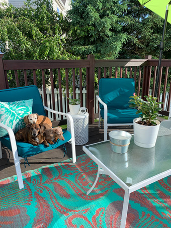 Refurbished Patio Furniture ... and some cute weiners!