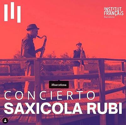 IFbarcelona-SaxicolaRubi.png