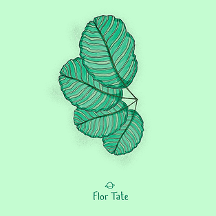 Ilustraciones-instagram-hojas-11.png