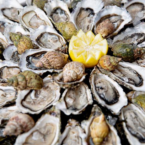 Plâteau d'huîtres & bulots De Mer en Fille