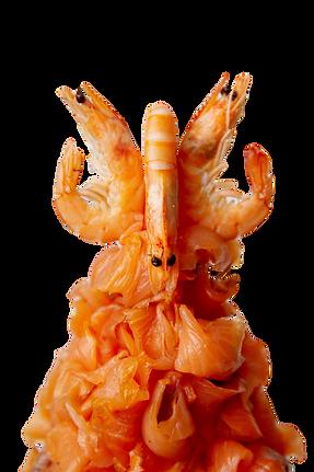 Crevettes & saumon