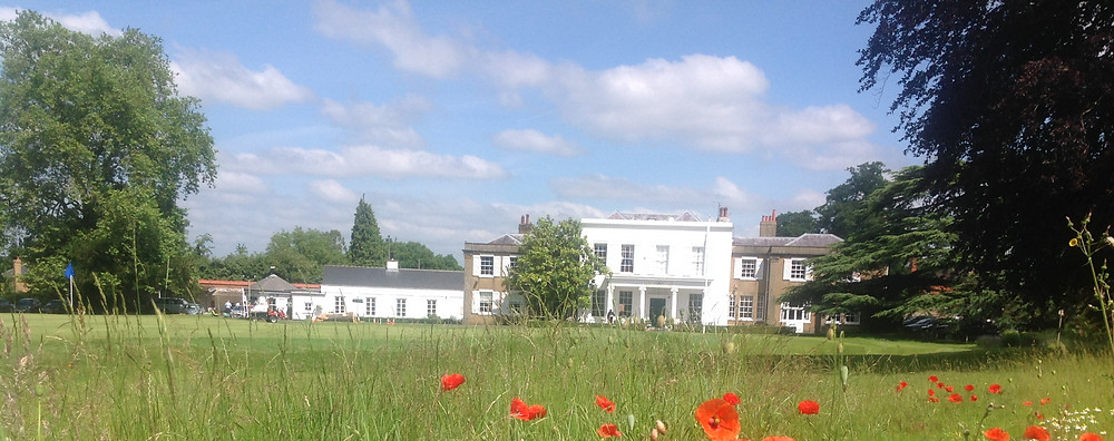 Effingham poppies infront of clubhouse_edited.jpg