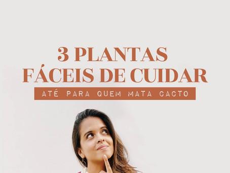 3 PLANTAS SUPER FÁCEIS DE CUIDAR!