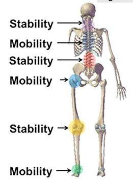 Stability Mobilty.JPG