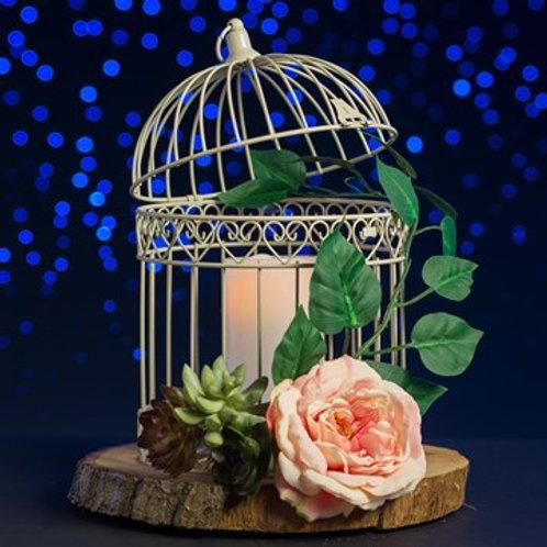 Indoor / Outdoor Medium Bird Cage - Ivory