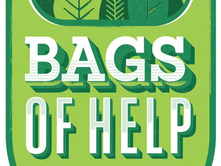 Further Funding Success with Tesco Bags of Help