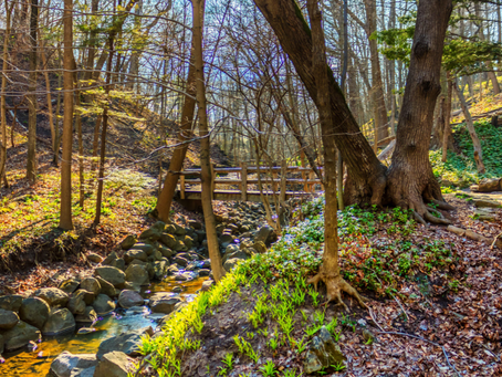 12 Gorgeous Hikes For Kids Around Milwaukee