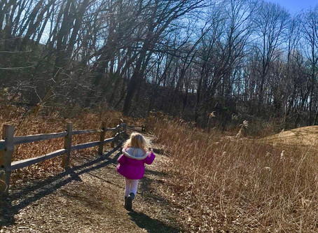 Quick: Hawthorn Glen Nature Center