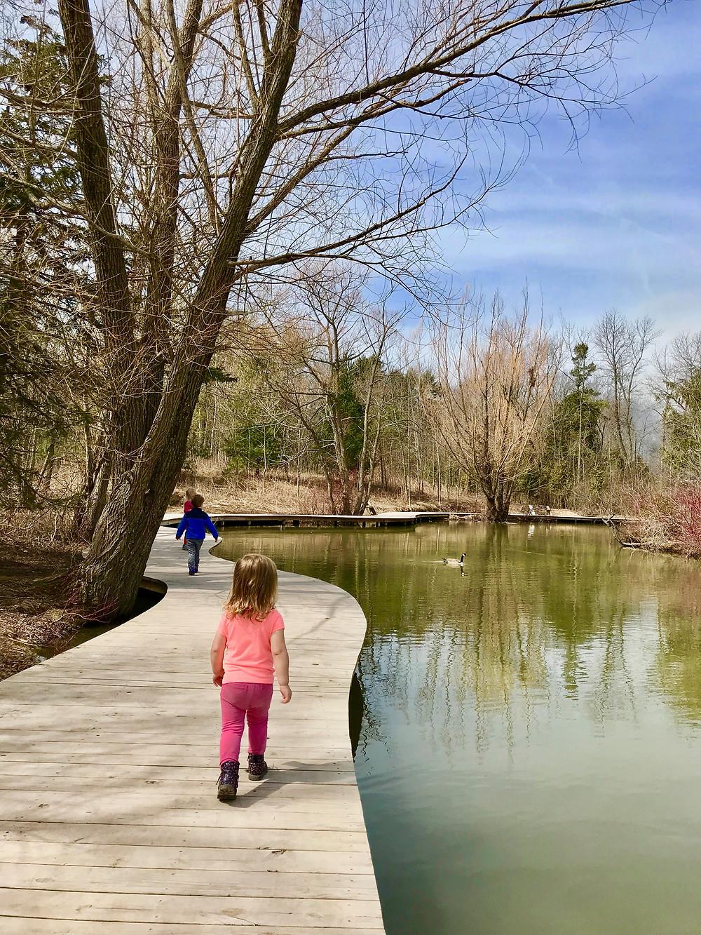 Mystery Lake at Schlitz Audubon Nature Center