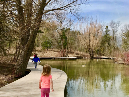 Schlitz Audubon Nature Center in Bayside, Wisconsin: A Quick Guide (2021)