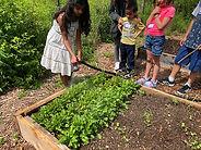 In the Garden: Summer Art + Nature Workshops at Lynden