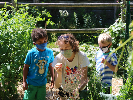 Nature Summer Camps at Urban Ecology Center Now Registering