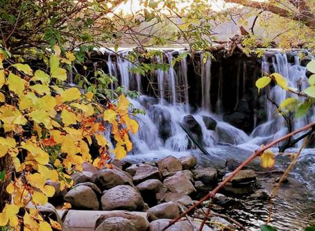 17 Gorgeous Fall Hikes Around Milwaukee
